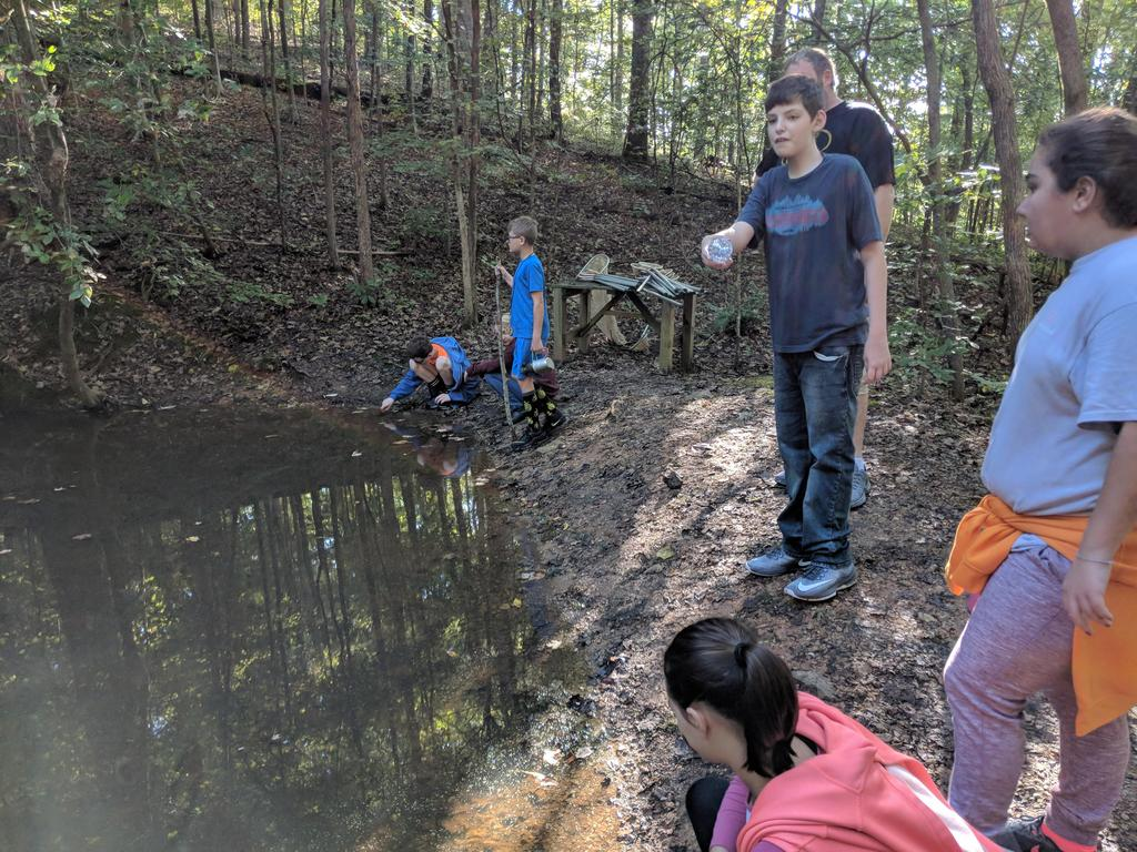 Students at the pond study