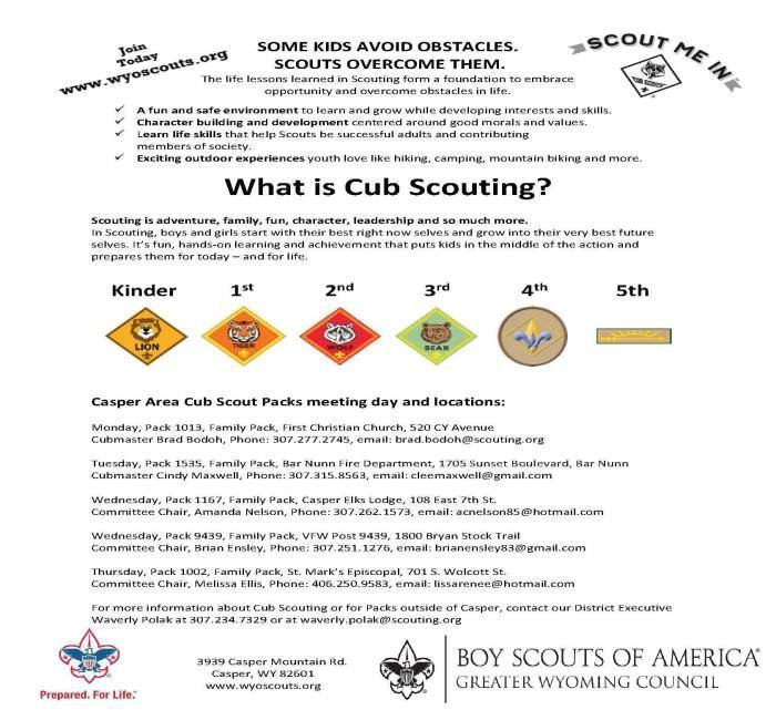 Cub Scouting Flyer