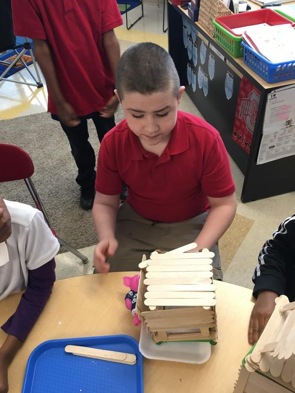 student building a polar bear house