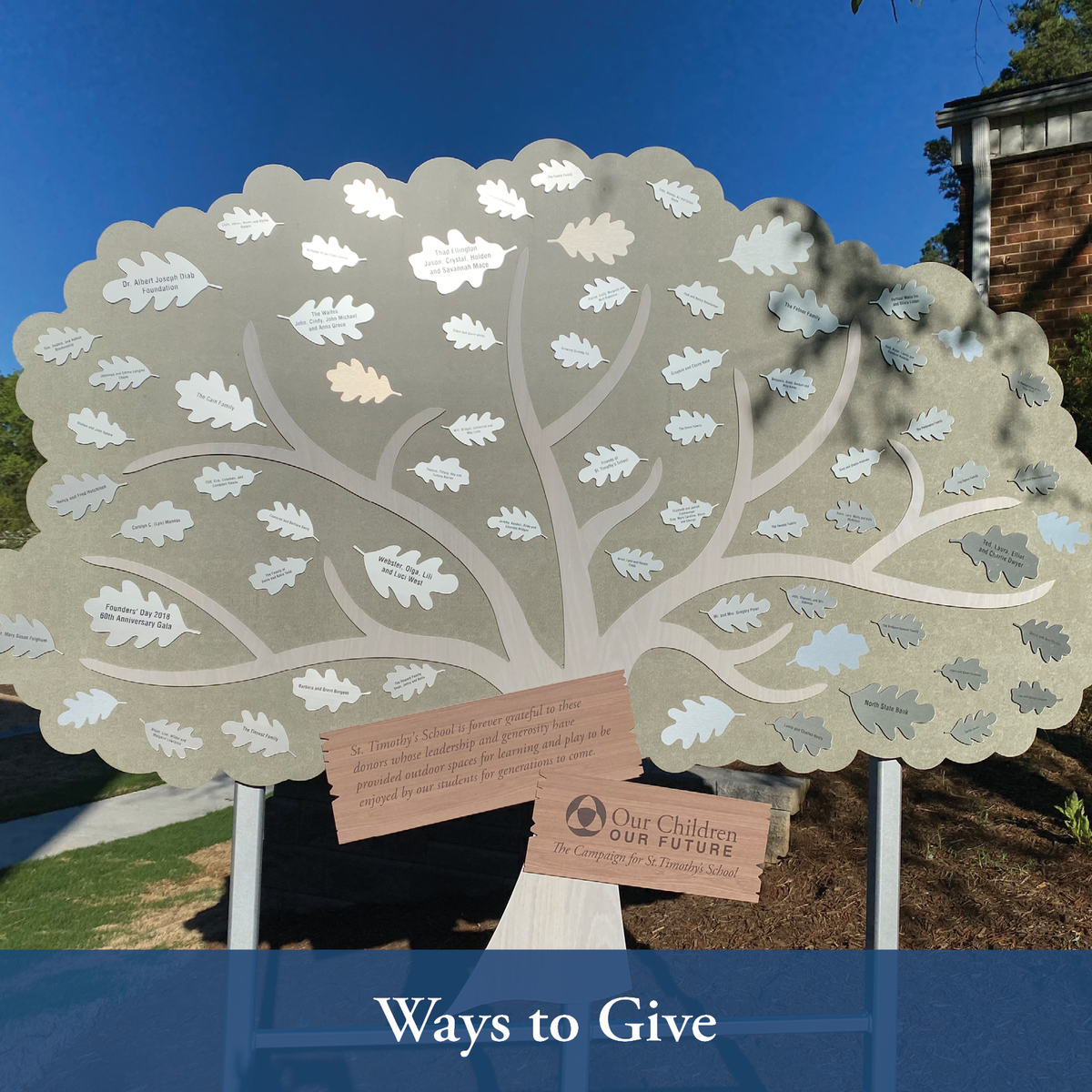 Ways to Give to STS
