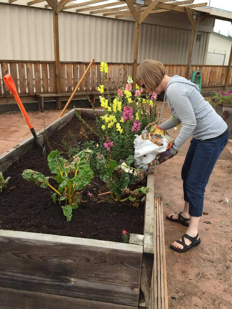 adding soil to garden bed