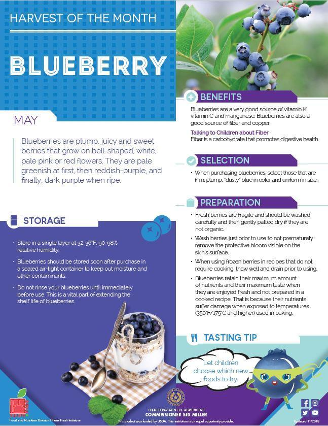 The fruit of the month of May is Blueberry.