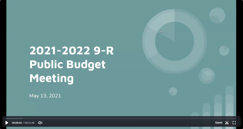 Screenshot of budget hearing zoom video