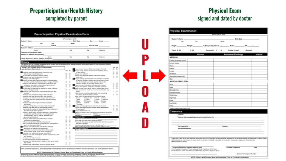 Participation Health History