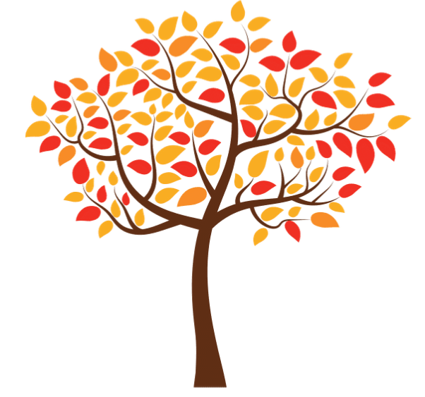 Tree with red, orange, and yellow fall leaves