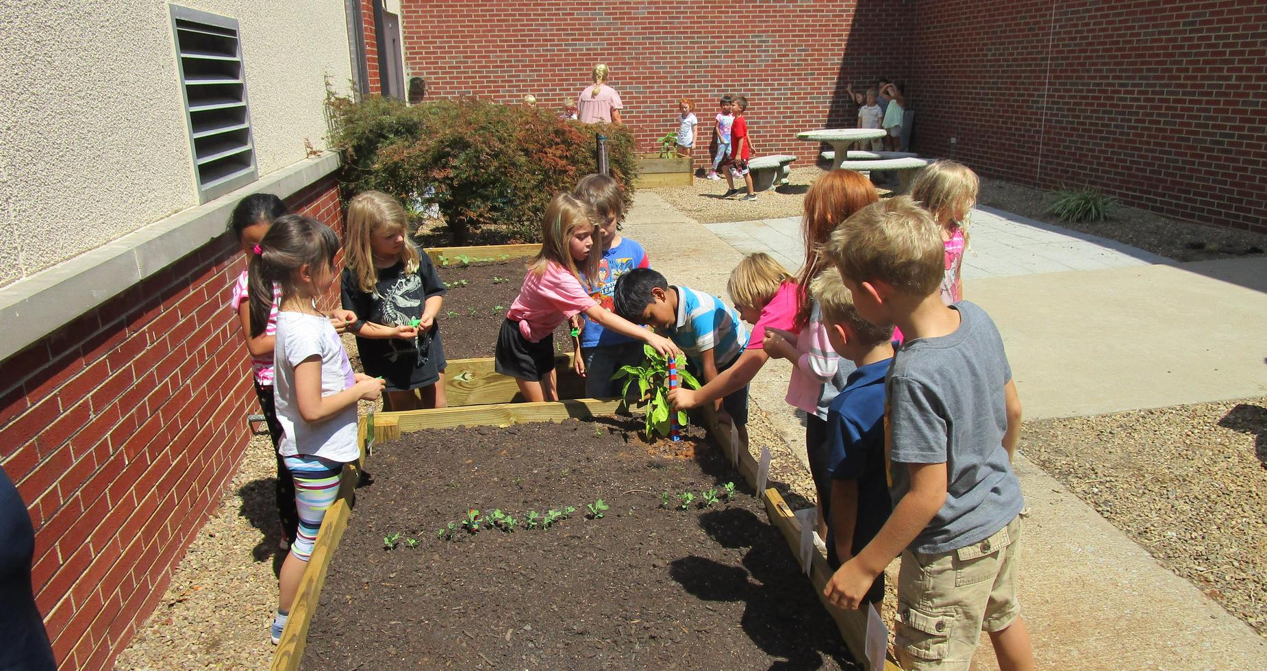 First Graders planting in their garden