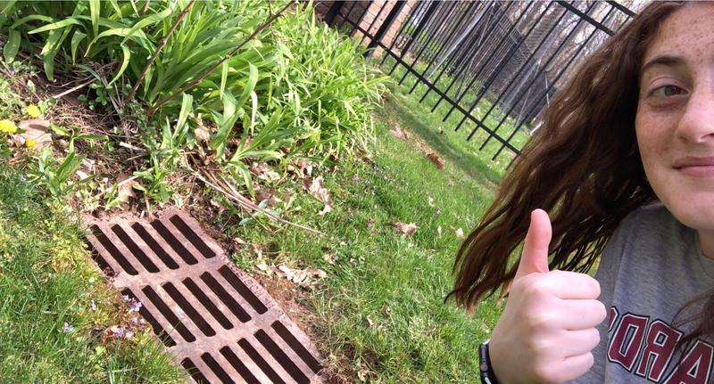 "WHS AP Environmental Science student Julia Weinstein gives a thumbs up after cleaning a storm drain as part of the ""adopt a drain"" environmental program."