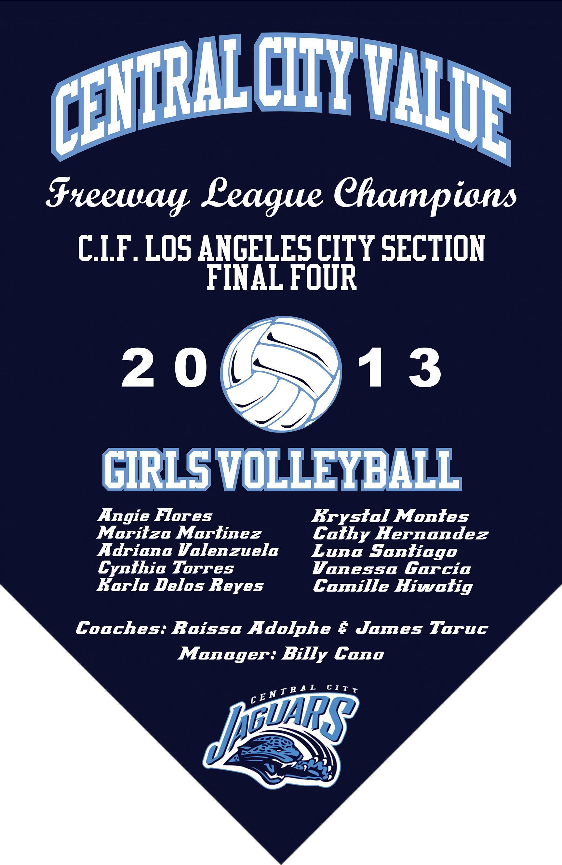 2013 Girls Volleyball Final Four Banner