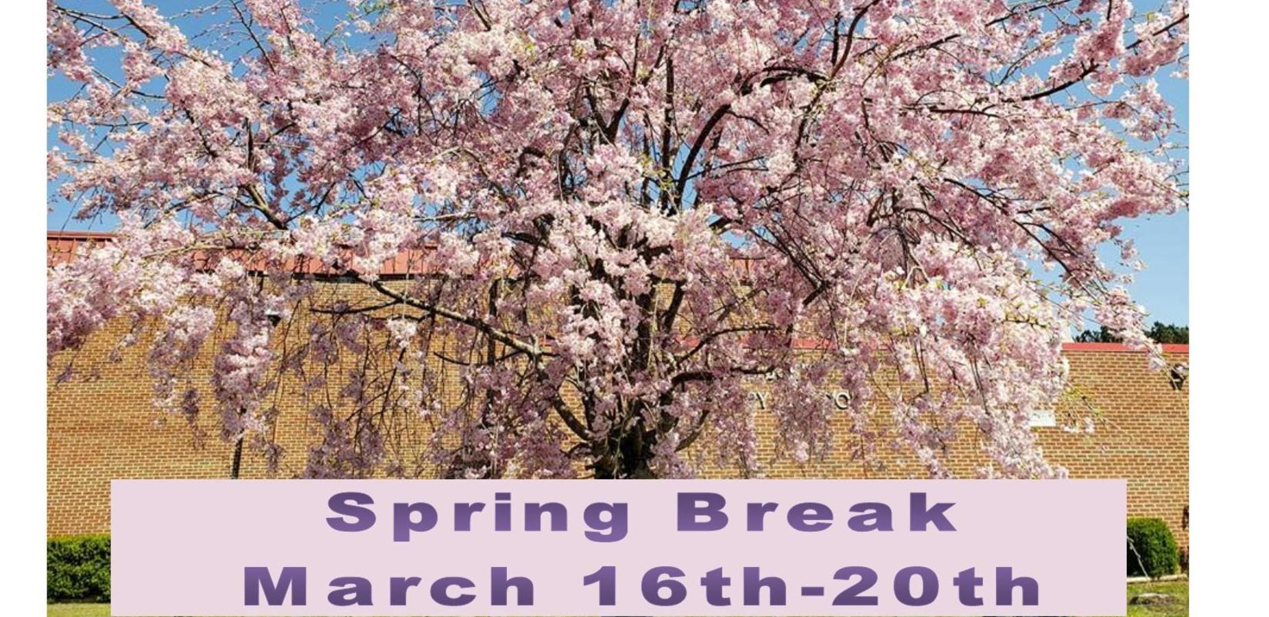 Spring Break March 16th-20th
