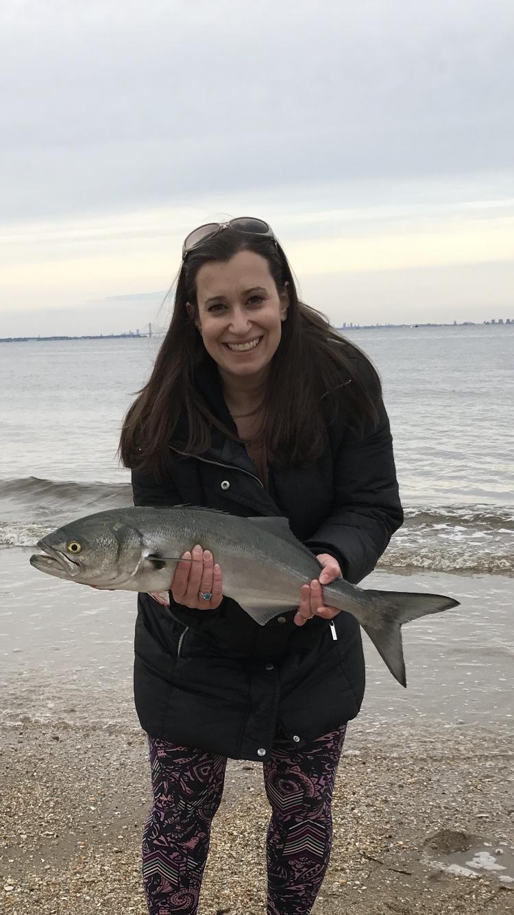 Mrs. I. its a bluefish