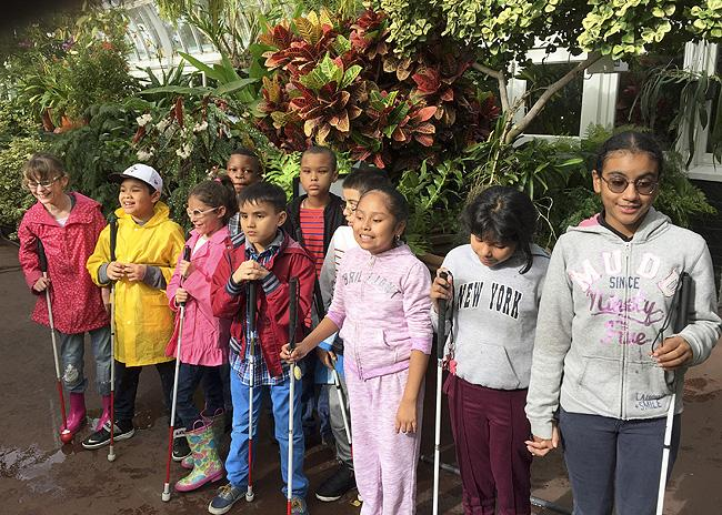 Classes at Botanical garden