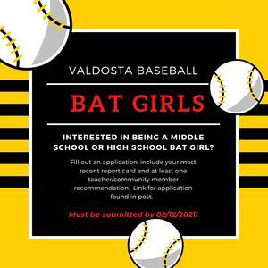 Valdosta Batgirl Information