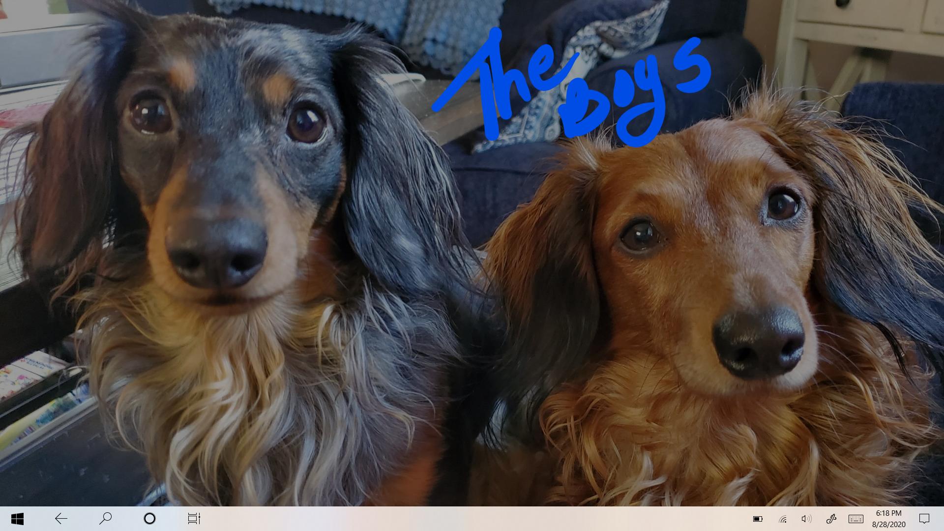 My 'Kids'