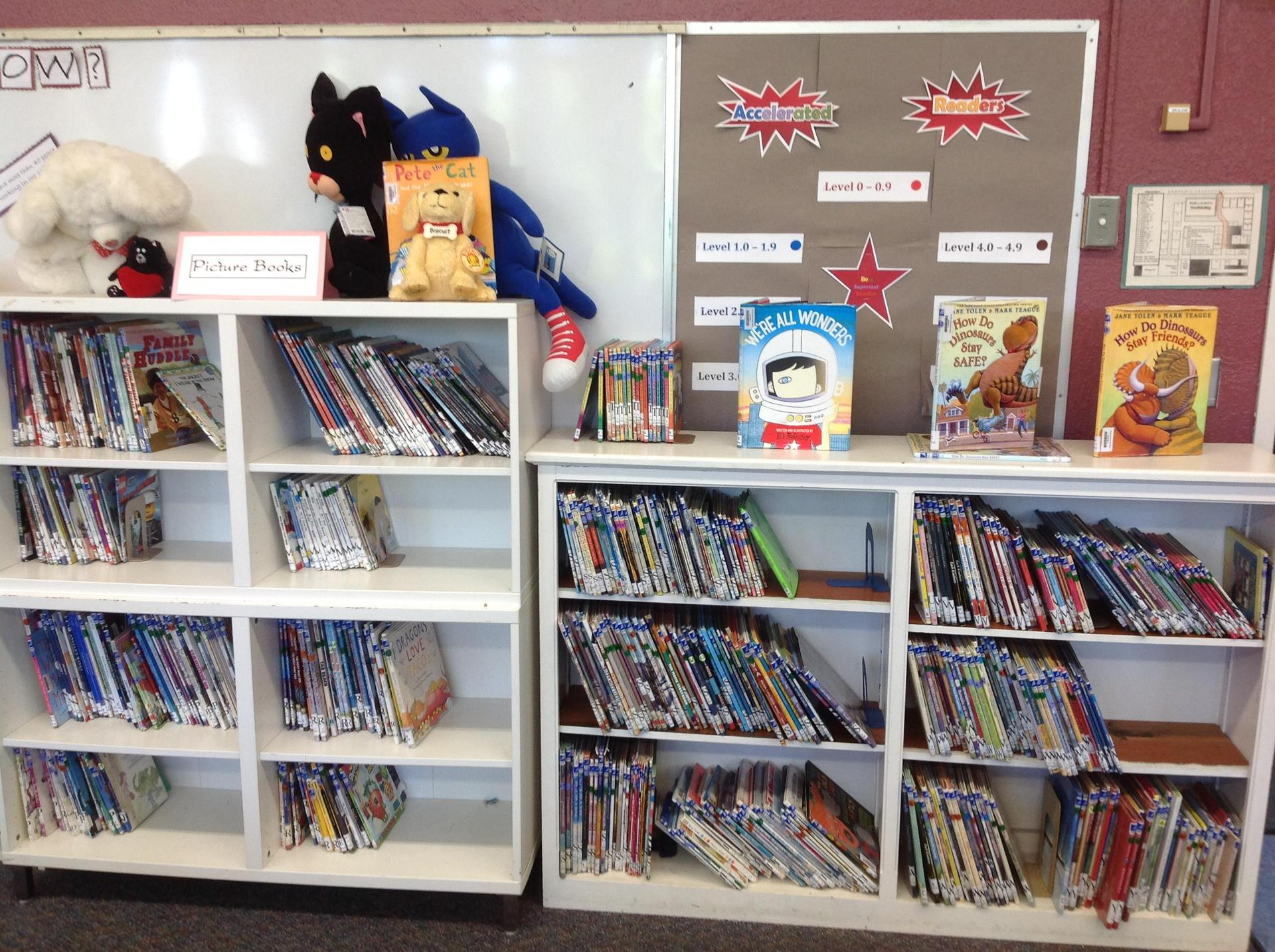 Library Services: Bilingual Section