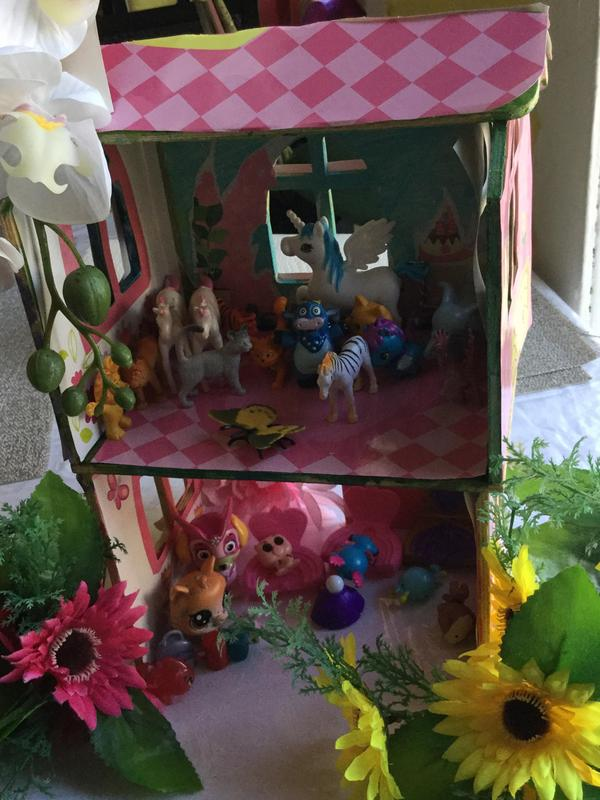 household animal project