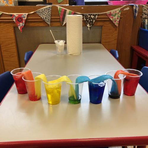 Walking Rainbow Science Experiment