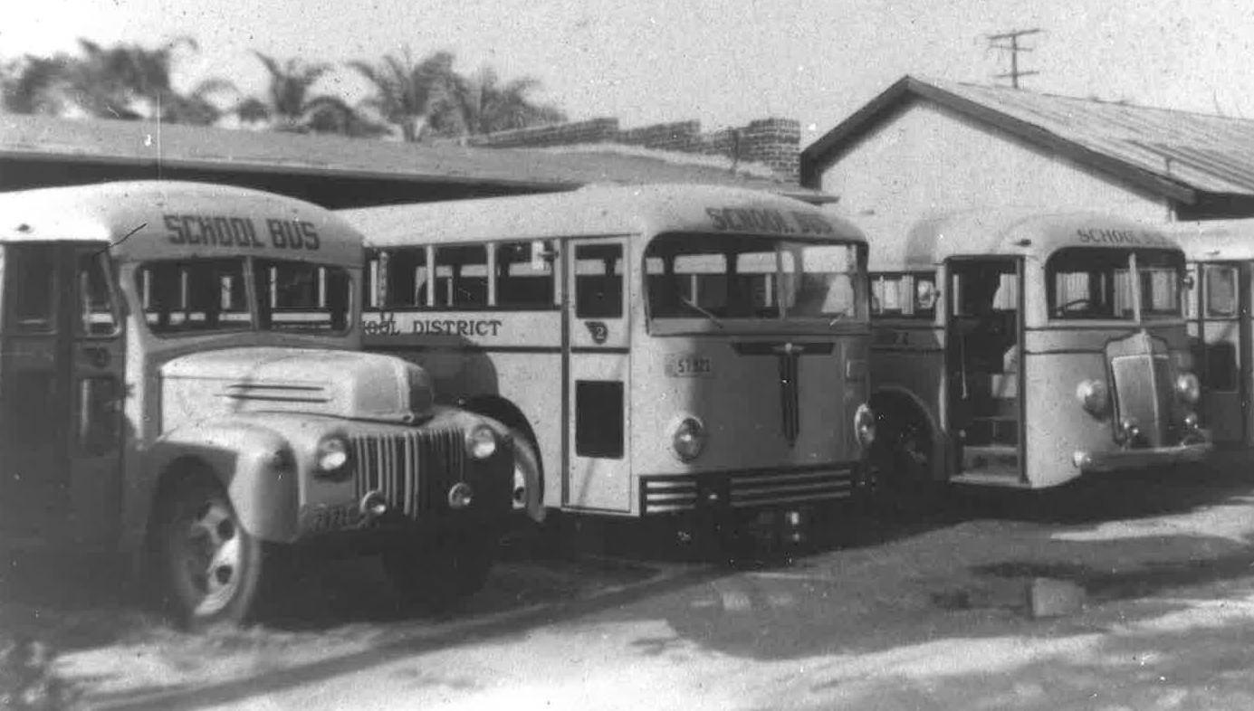Vintage School Buses