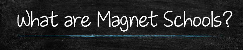 What are magnet Schools