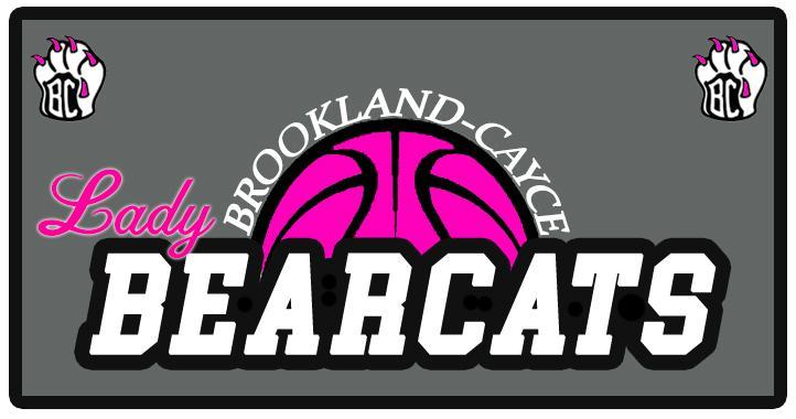 Ladies Basketball logo