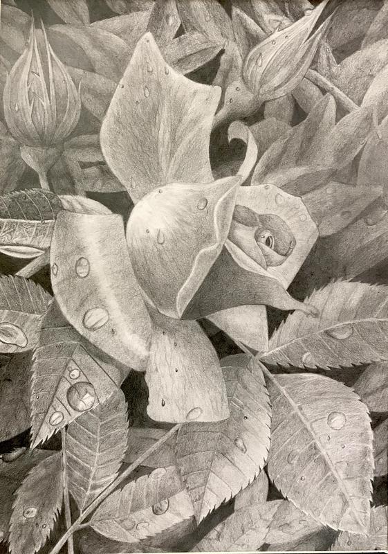 FLOWER-ANA
