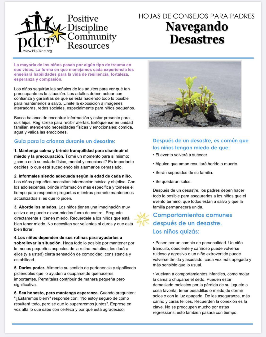 Navigating Disasters (Spanish)