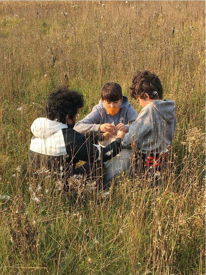 3 students in tall grass