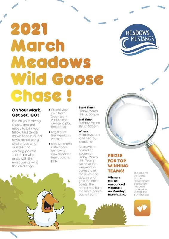 Meadows Wild Goose Chase