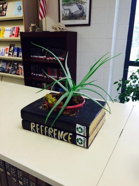 plant in book display