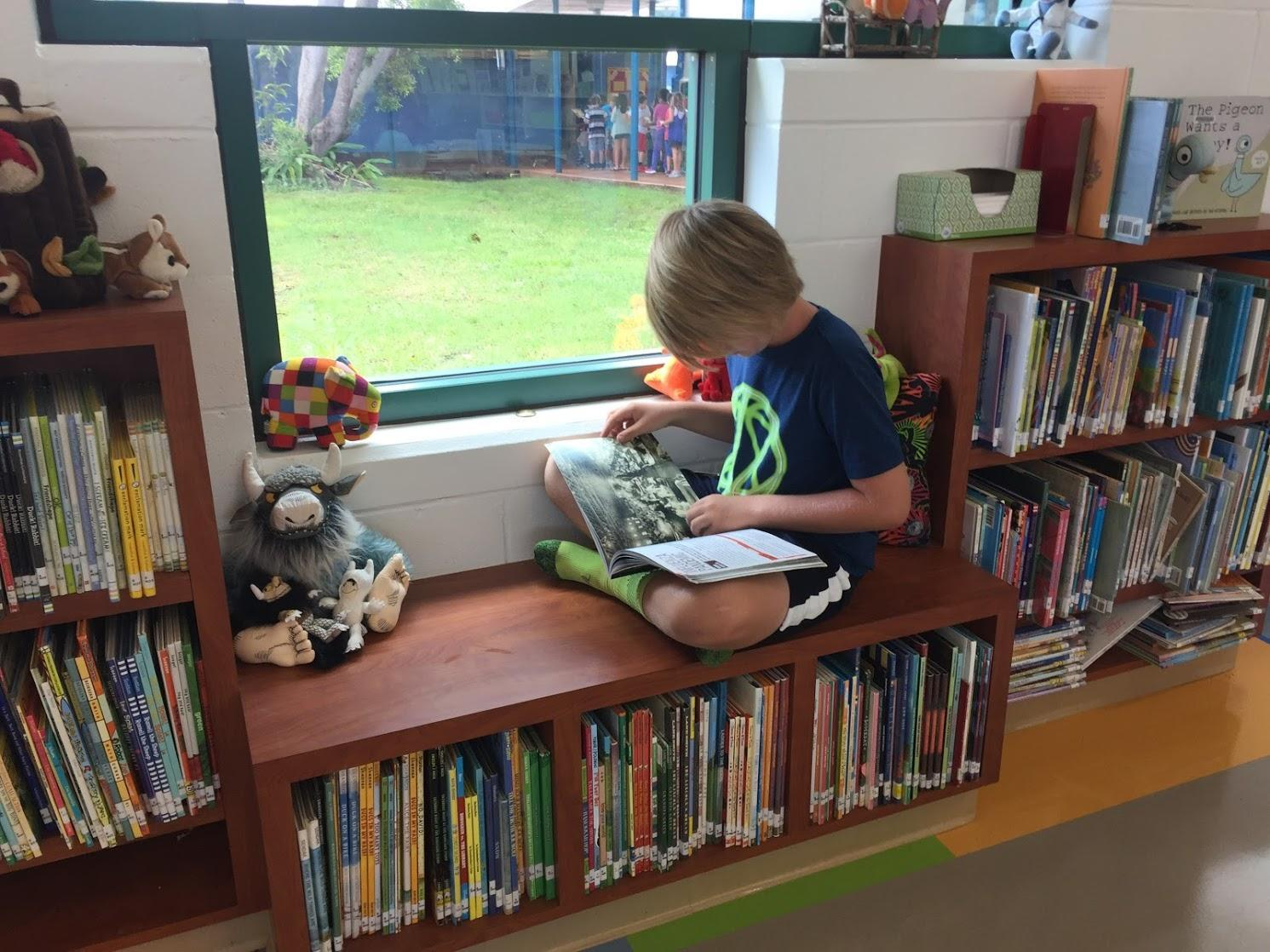 Student reading in window