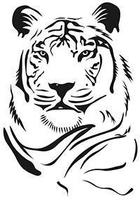 JCHS Tiger Image