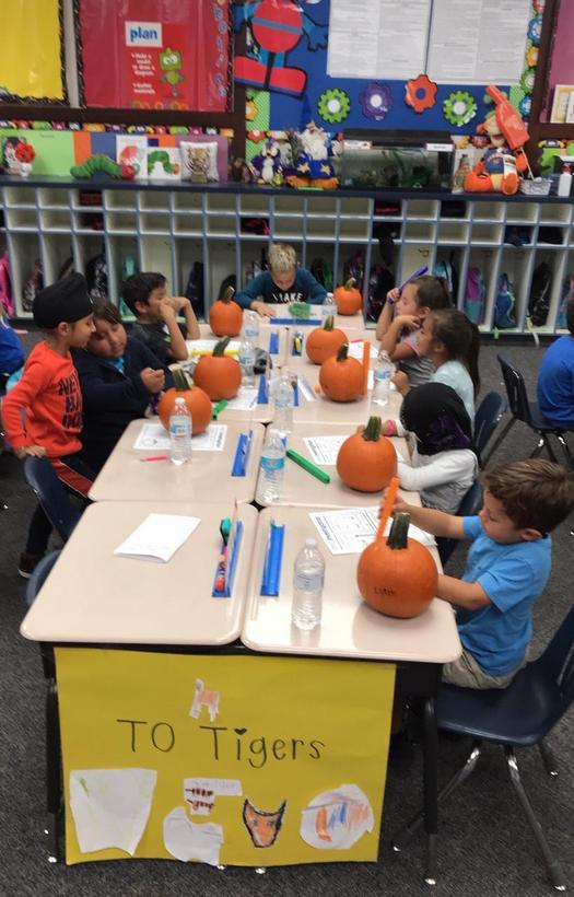 students measuring pumpkins