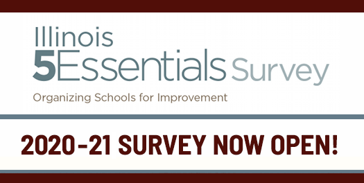 5 Essential Survey Featured Photo