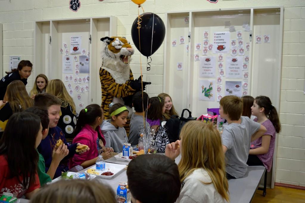 CCHS Tiger Mascot