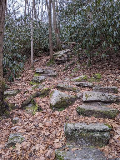 Trail1 photo