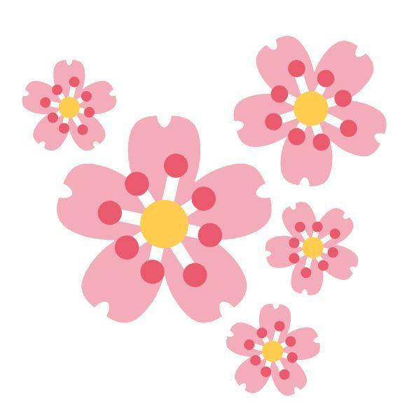 An illustration of 5 pink, yellow, and white cherry blossom flowers.
