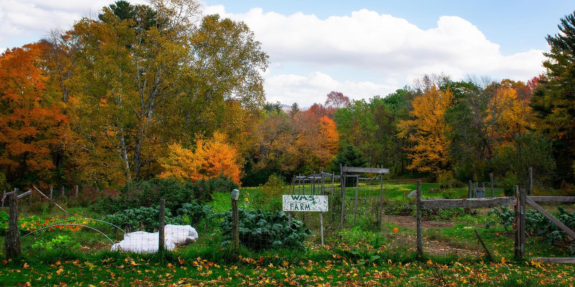 Entrance to our organic farm.