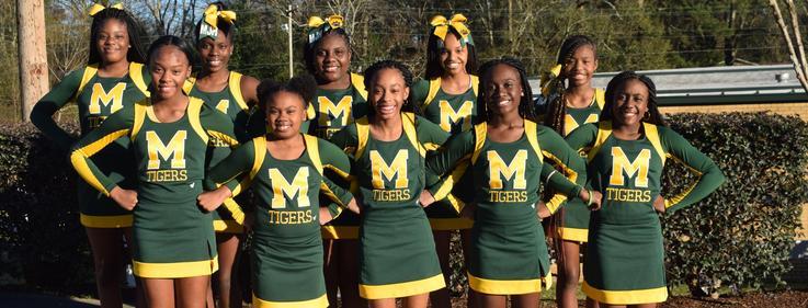 Denman Cheer Team 2018-2019