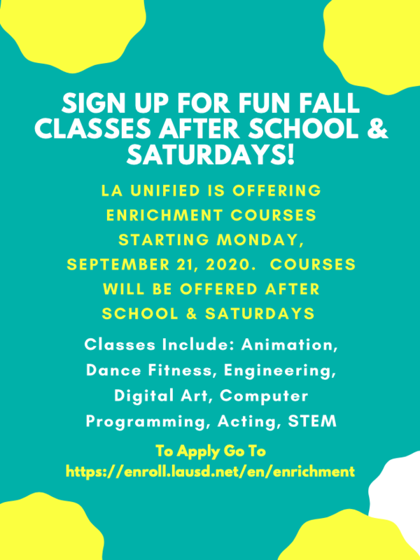 Sign Your Child Up for Fun Fall Enrichment Courses After School & Saturdays! Featured Photo