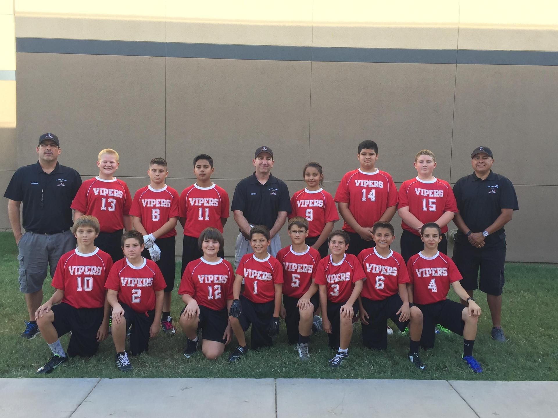 2015 Vipers Football
