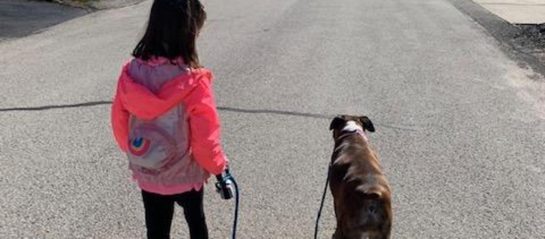 student walking their dog