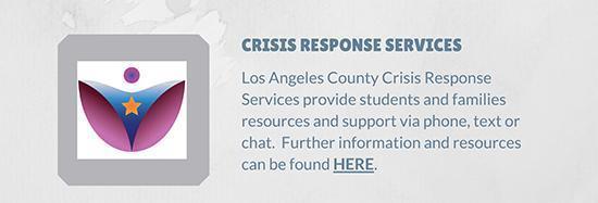 Crisis Response Services