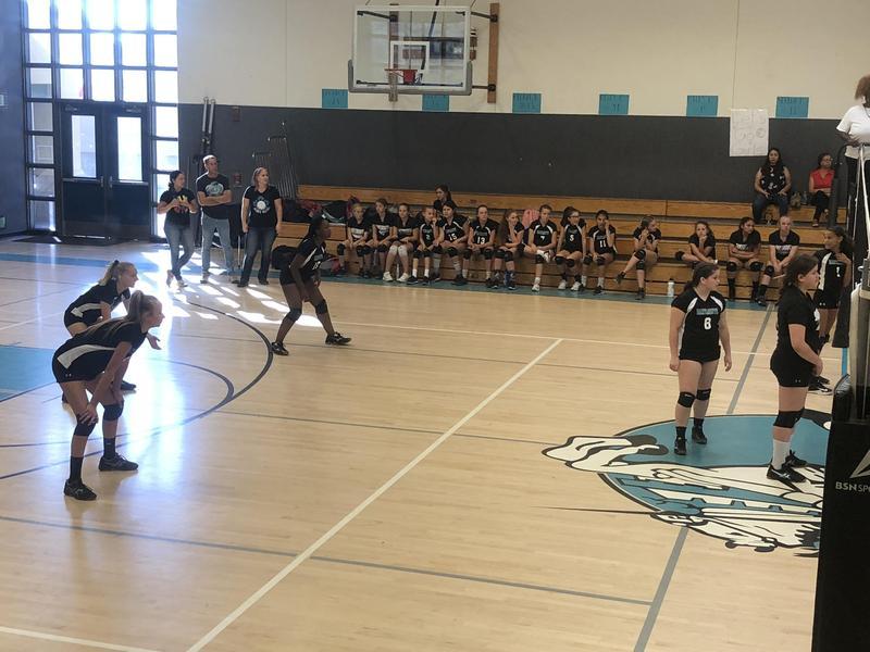 Dartmouth Volleyball versus Monte Vista