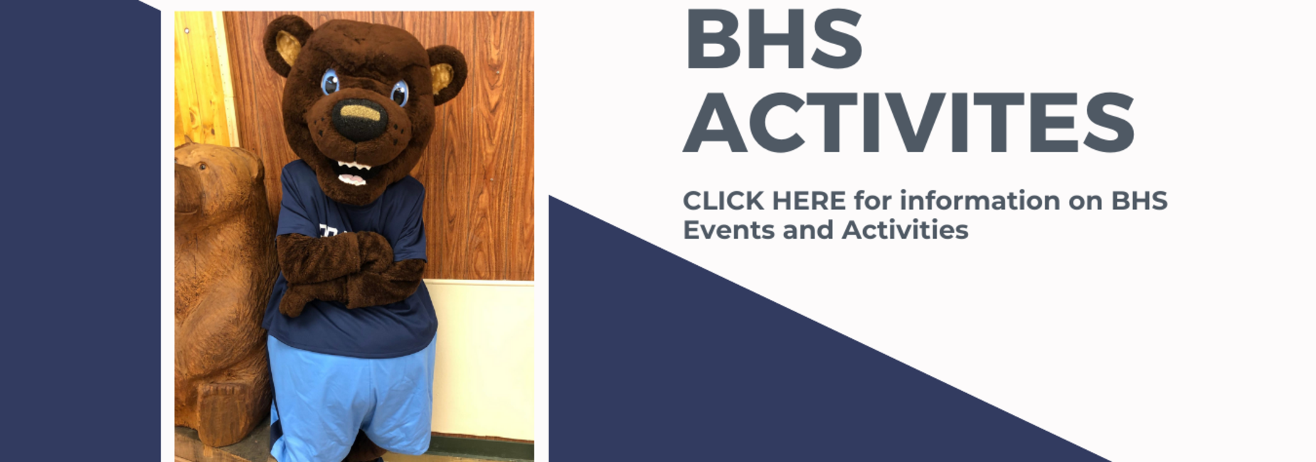 BHA Activities Website