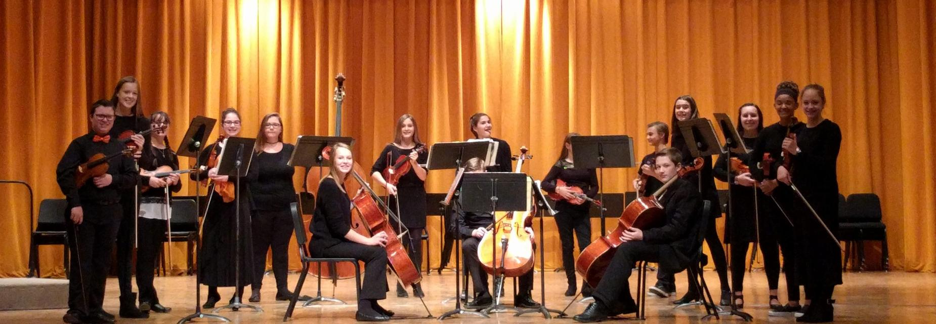 Chamber Orchestra at WSU Festival