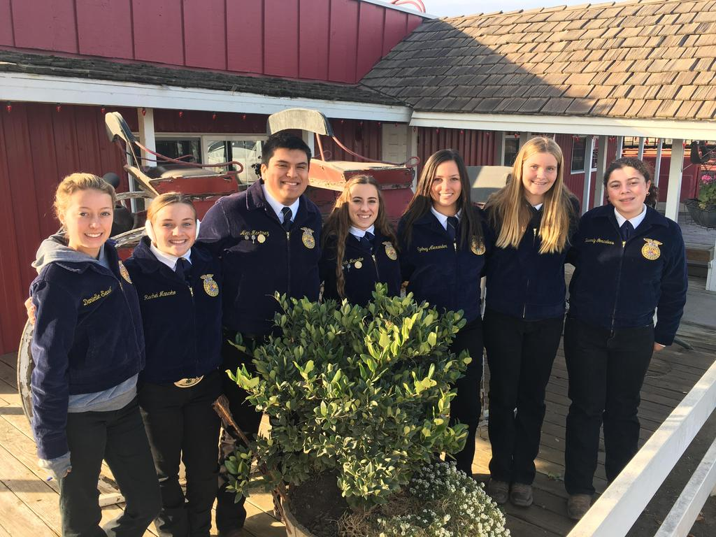Hanford Holiday Review Dairy Cattle Judging Contest