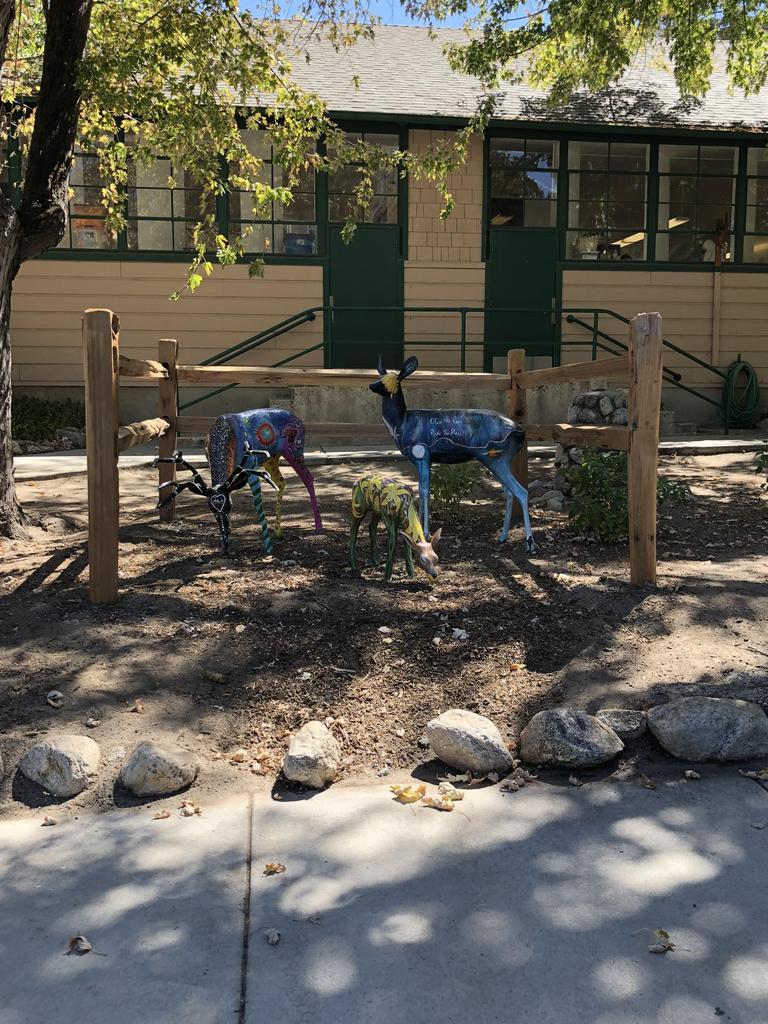 Deer in front of Idy School