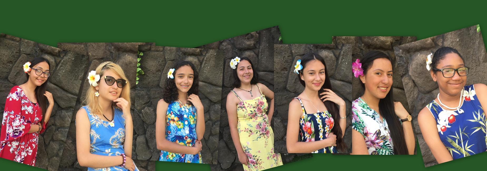 NPAA Band in Hawaii