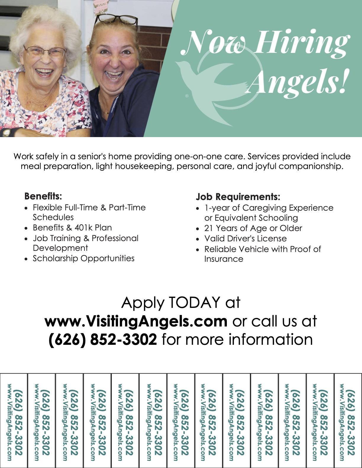 Visiting Angels Job