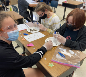 Another photo of the owl pellet lab