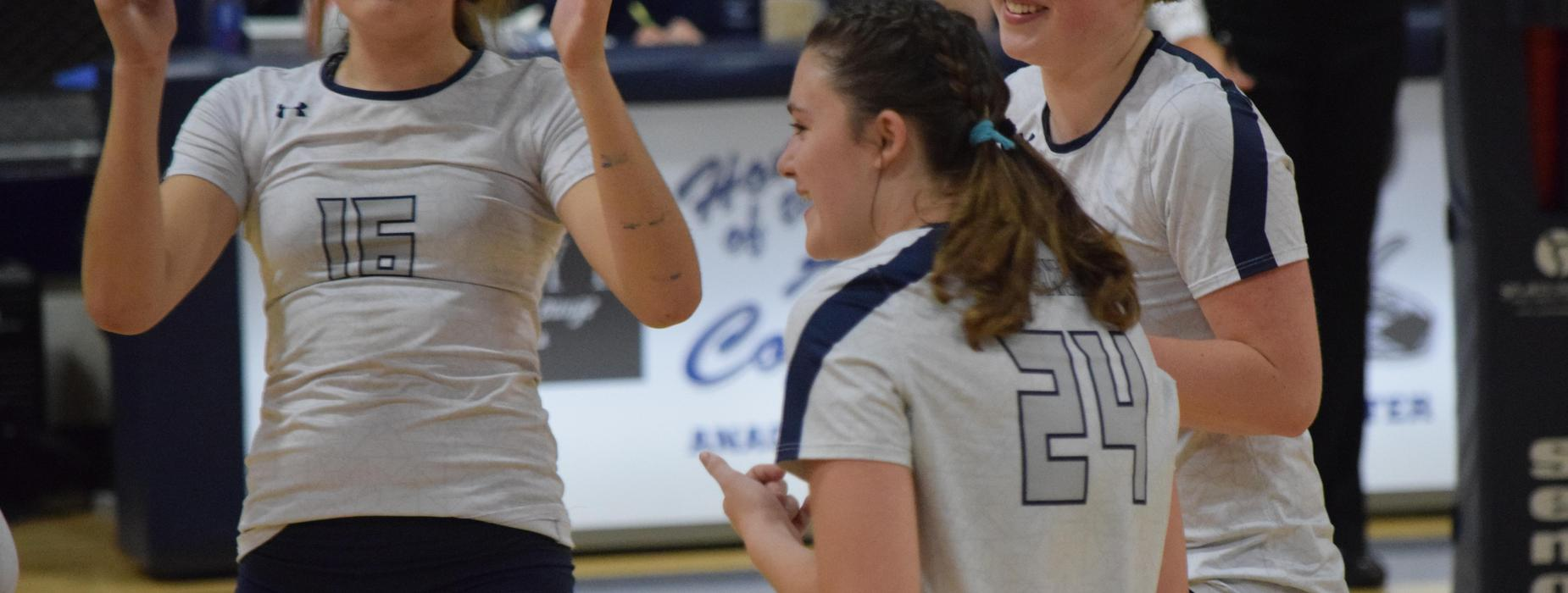 Lady Copperhead Volleyball